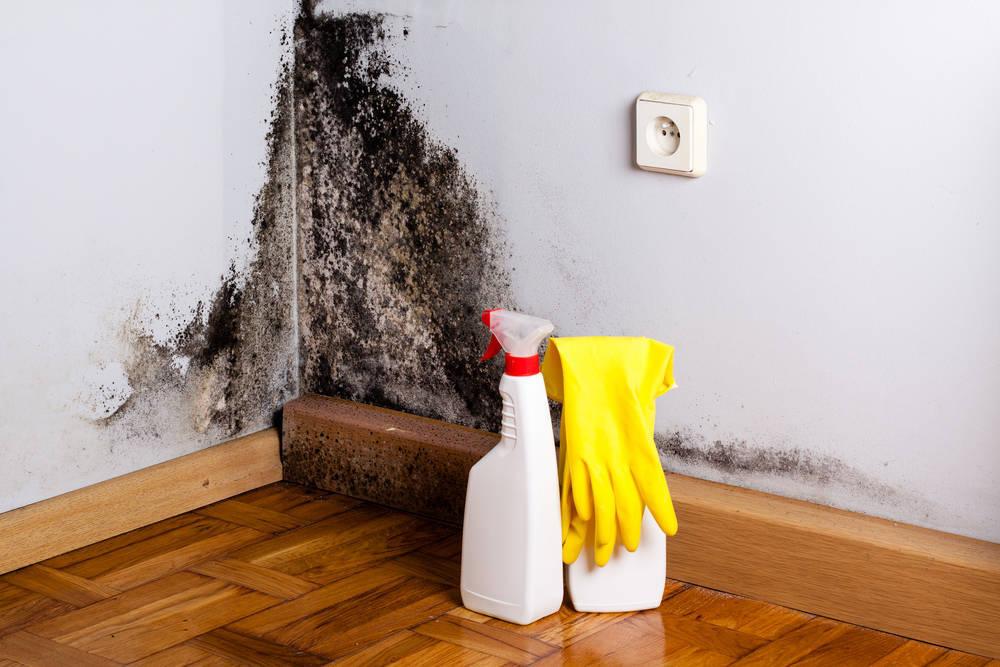 Solución a las humedades en tu casa