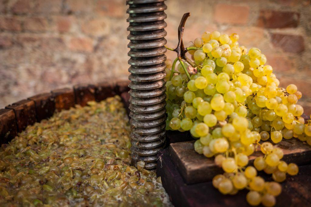 La maquinaria vinícola está de moda